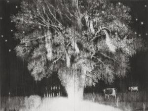 Guy Obserson, La chute des chouettes effraies, 2019, pierre noire sur papier, 180 x 240 cm (diptyque). © G.Oberson