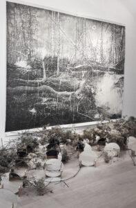 François Réau, Eclipse, 2016, mine de plomb et graphite sur papier, 210 x 228 cm, bois, clématites sauvages et miroirs, dimensions variables