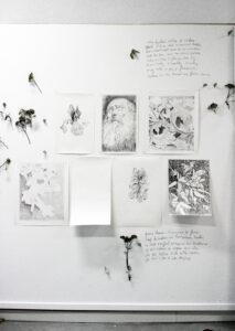 François Réau, Genius loci, 2018, fleurs et série de dessins, mine de plomb et graphite sur papier, dimensions variables
