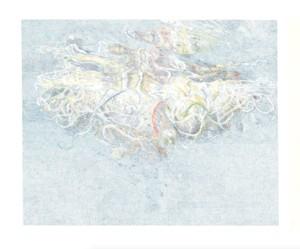 Naomi Cook, Ghost Net, 2018, encre sur papier, 60 cm x 80 cm