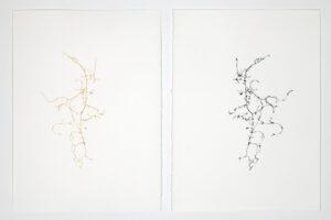 Léa Barbazanges, dessin d'une clémentine, 2010, filaments d'une clémentine assemblées en un dessin et son pendant à l'encre de chine, 28 x 38 cm