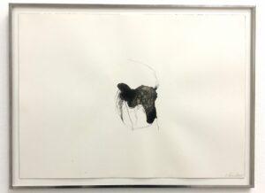 Gaëlle Chotard, Sans Titre, 2018, encre de chine sur papier, 26 x 36 cm