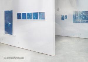 Pooya Abbasian, Vue de l'exposition Discreetly Living Behind Your Face, Galerie des petits carreaux, Saint Briac, France, 2018