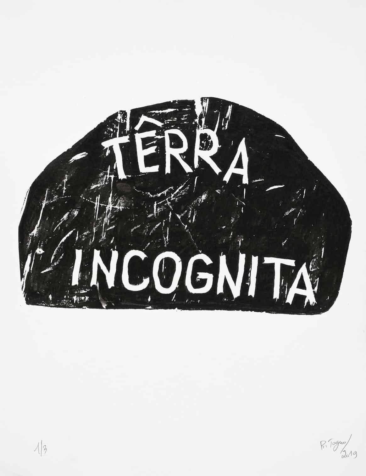 Barthélémy Toguo, Terra Incognita, 2019