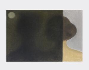 Shuo Hao, sans alibi 4, 42 x 59 cm, pastel, 2020