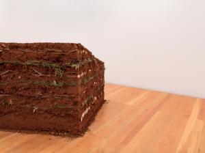 Gabriela Albergaria, Couche Sourde, 2010-2020. Pressed soil, branches and leaves, 120×984×140cm. ©Antonio Jorge Silva-2