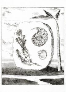 Audrey Matt Aubert, Poddema, 2020, graphite sur papier, 14,9 x 10,5 cm