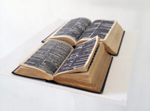 Emily Lazerwitz, Prime Guides, Dictionary, King James Bible, sharpie, 12 x 30 x 6 cm, October 2014