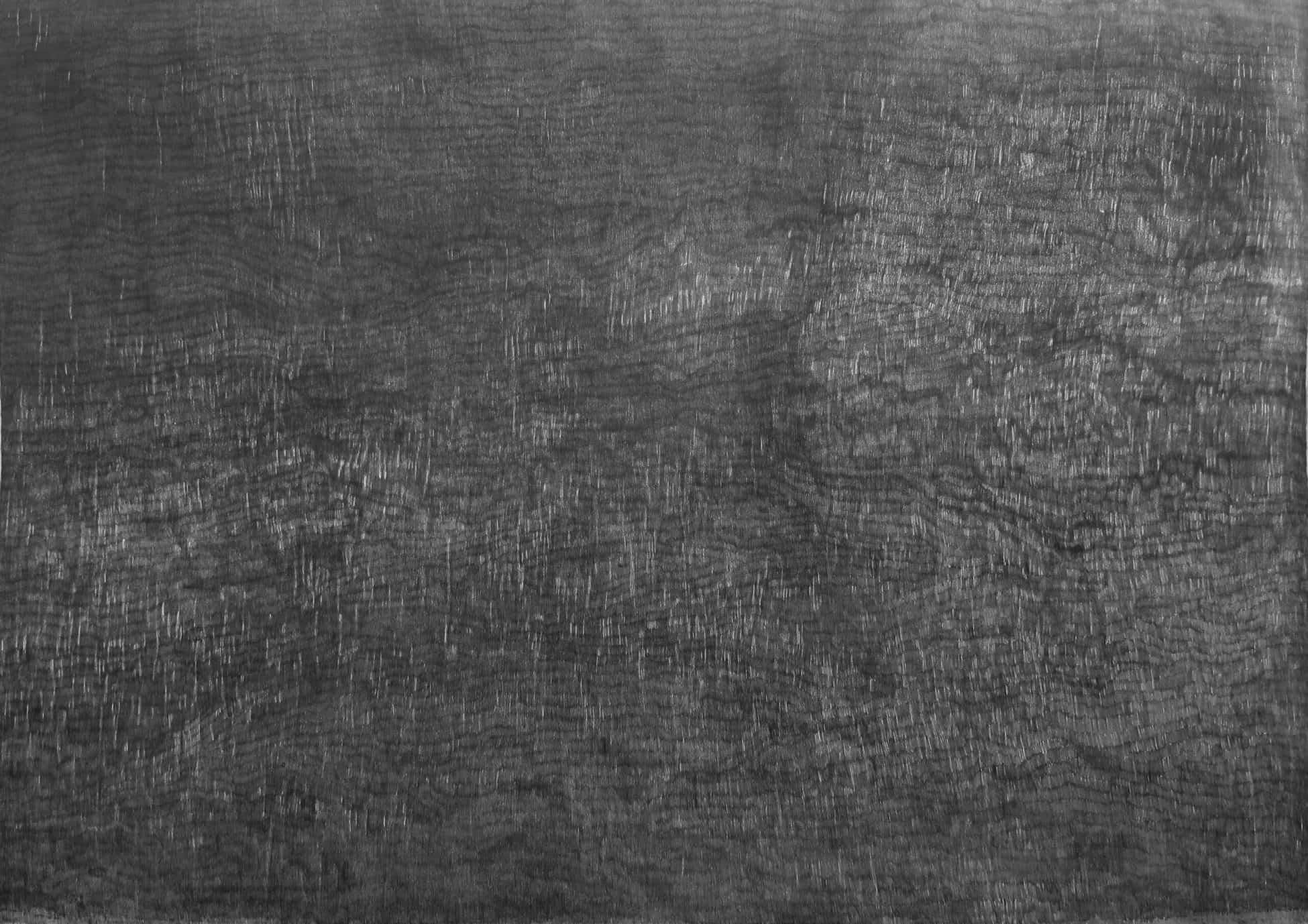 François Réau, Mesurer le temps, 2017 mine de plomb et graphite sur papier 250 x 385 cm, © Adagp