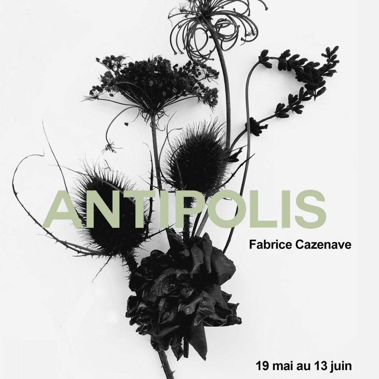 Antipolis, Fabrice Cazenave, Couverture du communiqué de presse